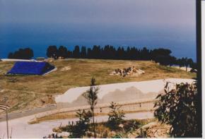 L'onda mediterranea di Palma
